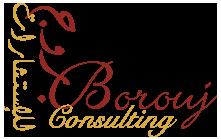 Borouj Consulting